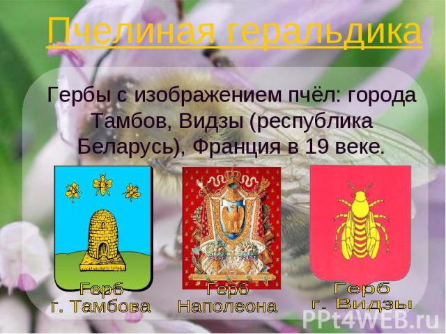 Пчелиная геральдика Гербы с изображением пчёл: города Тамбов, Видзы (республика Беларусь), Франция в 19 веке.