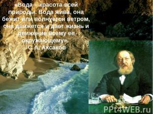 «Вода – красота всей природы. Вода жива, она бежит или волнуется ветром, она дви