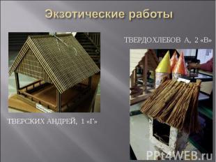 Экзотические работы Твердохлебов А, 2 «В»Тверских Андрей, 1 «Г»