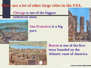 There are a lot of other large cities in the USA.Chicago is one of the biggest i