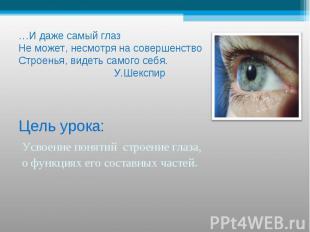…И даже самый глаз Не может, несмотря на совершенствоСтроенья, видеть самого себ