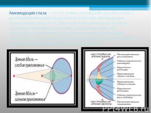 Аккомодация глаза –это настройка оптической системы глаза к рассматриванию равно