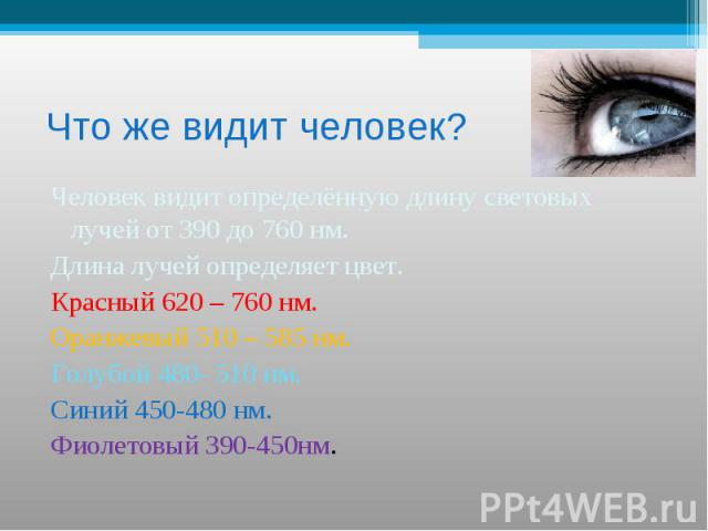 Что же видит человек? Человек видит определённую длину световых лучей от 390 до 760 нм.Длина лучей определяет цвет.Красный 620 – 760 нм.Оранжевый 510 – 585 нм.Голубой 480- 510 нм.Синий 450-480 нм.Фиолетовый 390-450нм.