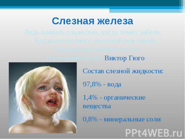 Слезная железа Ведь плакать сладостно, когда томит забота, Когда несчастного жестокий рок гнетёт,Слеза всегда смывает что-тоИ утешение несёт. Виктор Гюго Состав слезной жидкости:97,8% - вода1,4% - органические вещества0,8% - минеральные соли