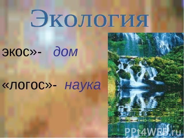 Экология экос»- дом«логос»- наука