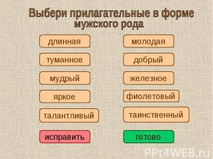 Выбери прилагательные в формемужского рода