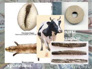 История эта была длинной. Пробовали разные предметы: меха, ткани, домашний скот.