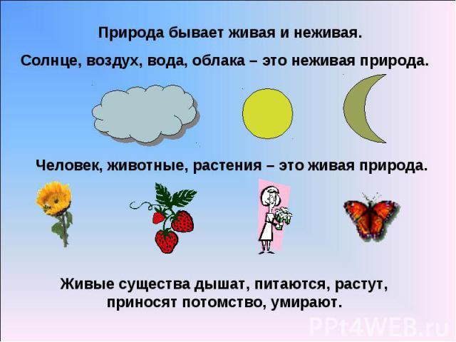 Природа бывает живая и неживая.Солнце, воздух, вода, облака – это неживая природа.Человек, животные, растения – это живая природа.Живые существа дышат, питаются, растут, приносят потомство, умирают.