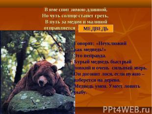 В яме спит зимою длинной,Но чуть солнце станет греть, В путь за медом и малинойо