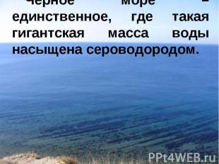 Черное море – единственное, где такая гигантская масса воды насыщена сероводород
