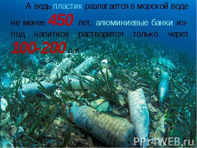 А ведь пластик разлагается в морской воде не менее 450 лет, алюминиевые банки из-под напитков растворятся только через 100-200 лет