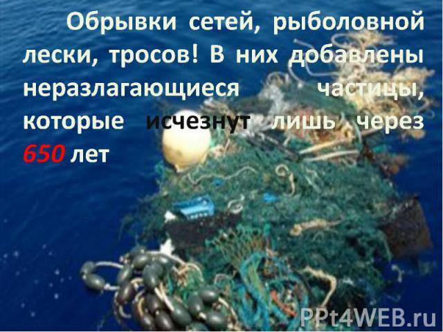Обрывки сетей, рыболовной лески, тросов! В них добавлены неразлагающиеся частицы, которые исчезнут лишь через 650 лет