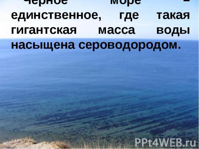 Черное море – единственное, где такая гигантская масса воды насыщена сероводородом.