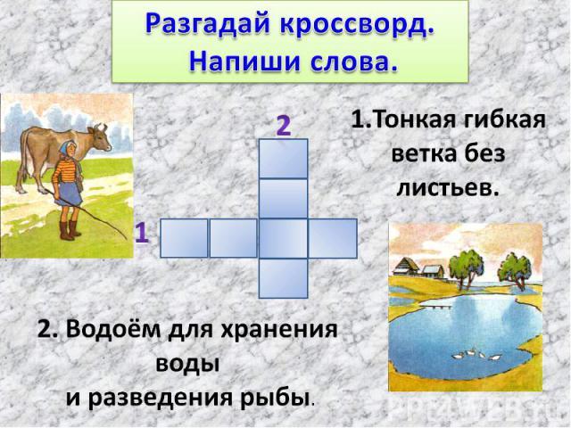 Разгадай кроссворд. Напиши слова.1.Тонкая гибкая ветка без листьев.2. Водоём для хранения воды и разведения рыбы.