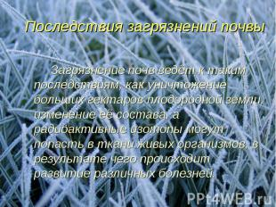 Последствия загрязнений почвы Загрязнение почв ведёт к таким последствиям, как у