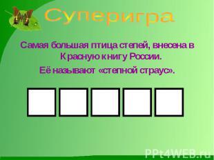 Суперигра Самая большая птица степей, внесена в Красную книгу России.Её называют