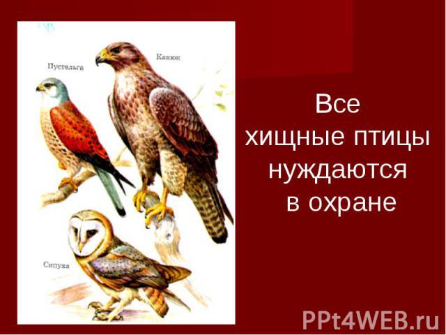 Все хищные птицы нуждаются в охране