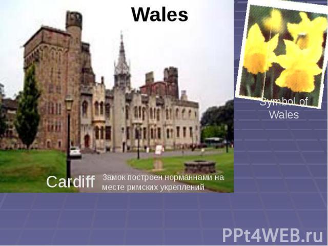 Wales Symbol of Wales