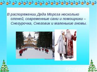 В распоряжении Деда Мороза несколько оленей, современные сани и помощники – Снег