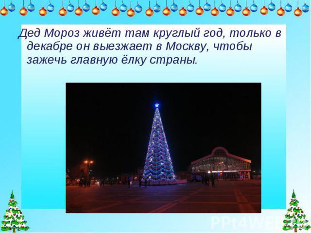 Дед Мороз живёт там круглый год, только в декабре он выезжает в Москву, чтобы зажечь главную ёлку страны.