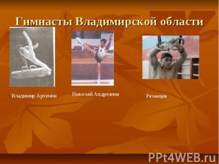Гимнасты Владимирской области