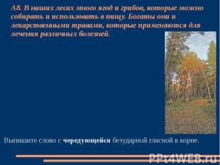 А8. В наших лесах много ягод и грибов, которые можно собирать и использовать в п