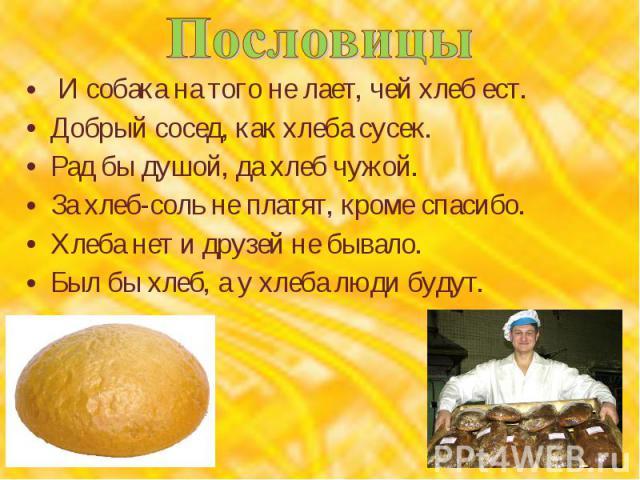 Пословицы И собака на того не лает, чей хлеб ест.Добрый сосед, как хлеба сусек.Рад бы душой, да хлеб чужой.За хлеб-соль не платят, кроме спасибо.Хлеба нет и друзей не бывало.Был бы хлеб, а у хлеба люди будут.
