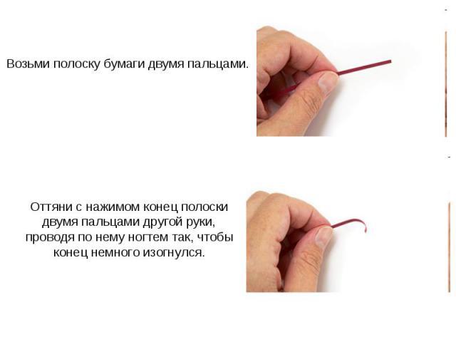 Возьми полоску бумаги двумя пальцами. Оттяни с нажимом конец полоски двумя пальцами другой руки, проводя по нему ногтем так, чтобы конец немного изогнулся.