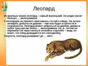 Леопард Из крупных кошек леопард – самый маленький. Он редко весит больше … кило