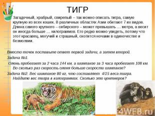 ТИГР Загадочный, храбрый, свирепый – так можно описать тигра, самую крупную из в