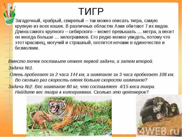 ТИГР Загадочный, храбрый, свирепый – так можно описать тигра, самую крупную из всех кошек. В различных областях Азии обитают 7 их видов. Длина самого крупного – сибирского – может превышать … метра, а весит он иногда больше … килограммов. Его редко …