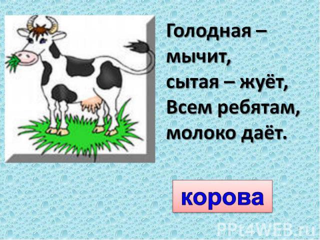 Голодная – мычит, сытая – жуёт,Всем ребятам, молоко даёт.корова