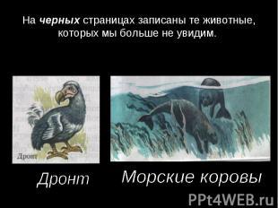На черных страницах записаны те животные, которых мы больше не увидим. ДронтМорс