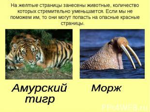 На желтые страницы занесены животные, количество которых стремительно уменьшаетс
