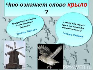 Что означает слово крыло ? Вращающаяся лопасть колеса ветряного двигателяСловарь