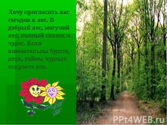 Хочу пригласить вас сегодня в лес. В добрый лес, могучий лес, полный сказок и чудес. Если внимательны будете, дети, тайны чудные откроете эти.