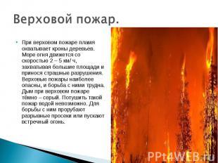 Верховой пожар. При верховом пожаре пламя охватывает кроны деревьев. Море огня д