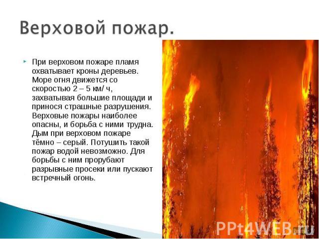 Верховой пожар. При верховом пожаре пламя охватывает кроны деревьев. Море огня движется со скоростью 2 – 5 км/ ч, захватывая большие площади и принося страшные разрушения. Верховые пожары наиболее опасны, и борьба с ними трудна. Дым при верховом пож…