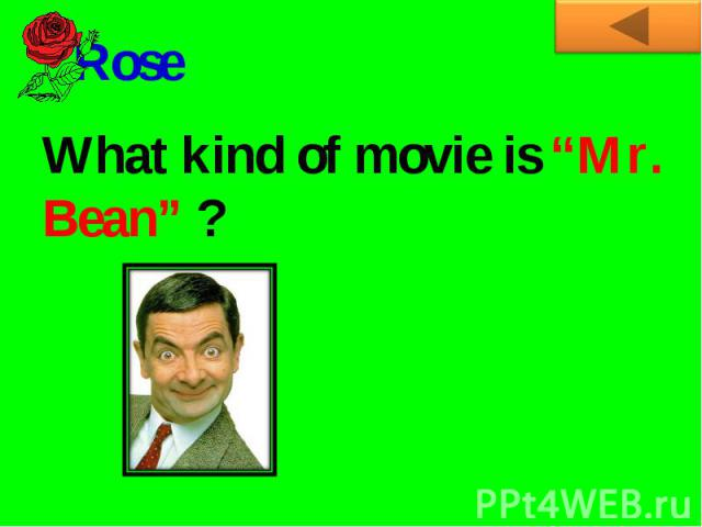 "RoseWhat kind of movie is ""Mr. Bean"" ?"