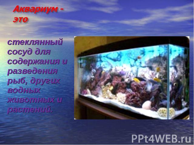 Аквариум - это стеклянный сосуд для содержания и разведения рыб, других водных животных и растений.