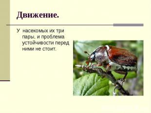 Движение. У насекомых их три пары, и проблема устойчивости перед ними не стоит.