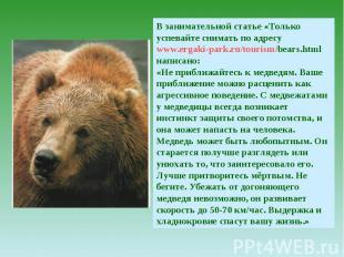 В занимательной статье «Только успевайте снимать по адресу www.ergaki-park.ru/to