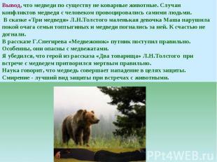 Вывод, что медведи по существу не коварные животные. Случаи конфликтов медведя с
