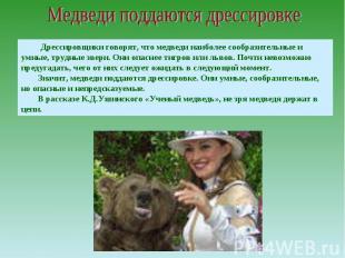Медведи поддаются дрессировке Дрессировщики говорят, что медведи наиболее сообра