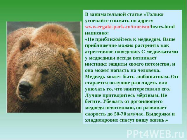 В занимательной статье «Только успевайте снимать по адресу www.ergaki-park.ru/tourism/bears.html написано: «Не приближайтесь к медведям. Ваше приближение можно расценить как агрессивное поведение. С медвежатами у медведицы всегда возникает инстинкт …