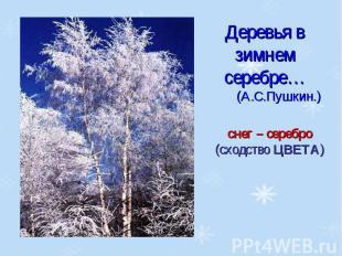Деревья в зимнем серебре…(А.С.Пушкин.)снег – серебро (сходство ЦВЕТА)