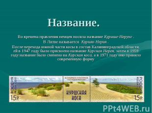 skachat-prezentatsiyu-na-temu-kurshskaya-kosa