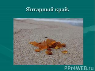 Янтарный край.