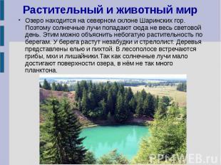 Растительный и животный мир Озеро находится на северном склоне Шаринских гор. По