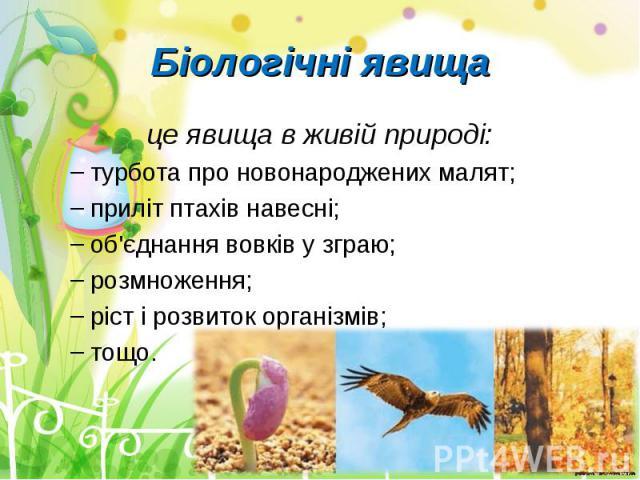 це явища в живій природі: це явища в живій природі: турбота про новонароджених малят; приліт птахів навесні; об'єднання вовків у зграю; розмноження; ріст і розвиток організмів; тощо.